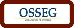 osseg1